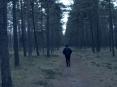 Toomik's Film